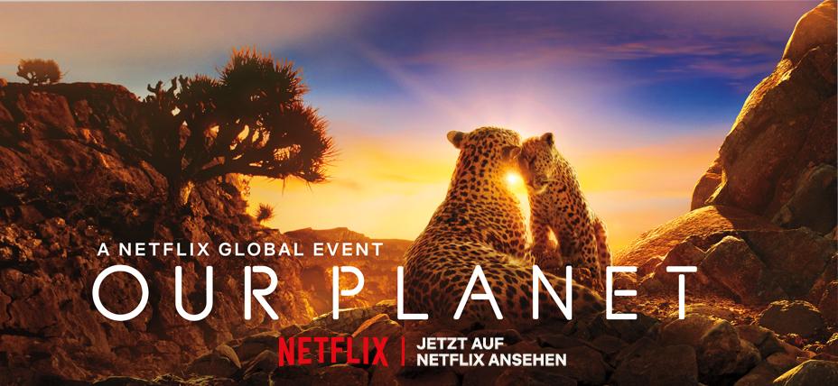 Netflix Anschluss